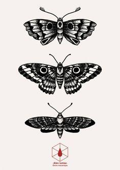 Tattoos, body tattoos, new tattoos, traditional butterfly tattoo, black whi Stomach Tattoos, Leg Tattoos, Body Art Tattoos, Small Tattoos, Sleeve Tattoos, Cool Tattoos, Tattos, Tattoo Dotwork, 16 Tattoo