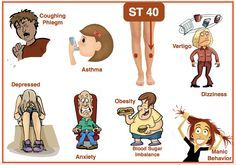 ST 40 – my all time favourite acupuncture point! I want to needle ST 40 on everyone! Best point for phlegm (visible and invisible). Great for large of amount of phlegm, asthma, cysts, atherosclerosis, cystic acne, obesity, anxiety, dizziness, depression, panic attack, and manic behaviour. Did I mention? I LOVE ST 40!