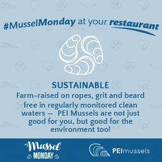 Sustainable: Farm-raised on ropes, grit and beard free in regularly monitored clean waters — PEI Mussels are not just good for you, but good for the environment too! Free In, Mussels, Ropes, A Table, Sustainability, Environment, Cleaning, Home Cleaning, Clams