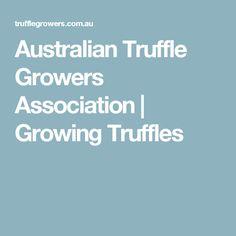 Australian Truffle Growers Association   Growing Truffles