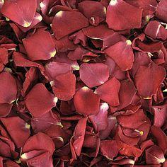 Freeze dried rose petalsdried rose petalsrosesflower girl petalswedding flowersnatural confettiflower petals