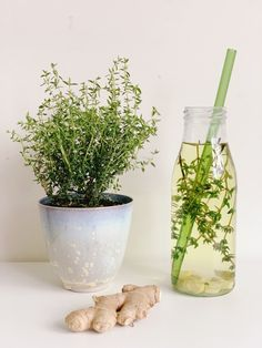 Thee met tijm en gember tegen griep - One Hand in my Pocket Healthy Dishes, Healthy Drinks, Healthy Tips, Smoothie Drinks, Smoothies, Home Made Ice Tea, Healthy Food Alternatives, Infused Water Recipes, Herbs For Health