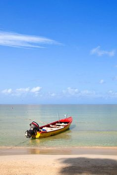 Top Honeymoon Destinations in January; Jamaica