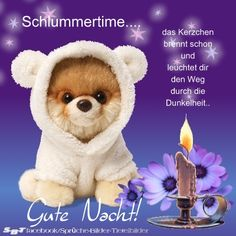 Grüße zur Nacht Beautiful Gif, Good Morning Wishes, Good Night, Baby Animals, Haha, About Me Blog, Teddy Bear, Christian Dating, Sport