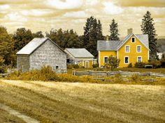sunny farmstead