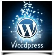 How to setup WordPress self hosted Website? WordPress is CMS (Content Management System) based project. It's easy-to-use, quite powerful, and flexible. Wordpress Admin, Premium Wordpress Themes, Wordpress Plugins, Wordpress Support, Catamaran, Location Guadeloupe, Wordpress Website Design, Drupal, E Commerce