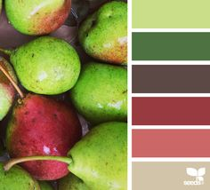 {produced hues} - https://www.design-seeds.com/slow-lifestyle/market-hues/produced-hues14