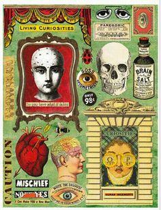 Ephemera, collage, journaling, oddities, vintage, curiosities