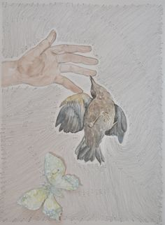 Bird in the Hand mixed media on paper by Carolyn Roberts