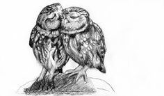 This is a graphite pencil sketch of two owls grooming. Dog Pencil Drawing, Pencil Drawings, Cute Owl Tattoo, Deep Tattoo, Owl Tattoo Drawings, Owl Sketch, Owl Books, Drawing Tutorials For Beginners, Wood Carving Designs