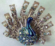 peacock pin, I love pins!