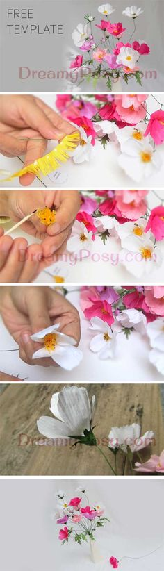 It's never easier to DIY paper cosmos flower, as all the templates are available for Free here. Just download and craft your posy.