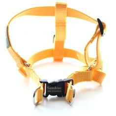 Personalized Engraved Buckle Dog Harness- 18 Colors!