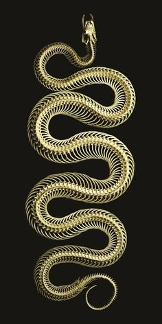 Best Picture For Serpent tattoo simple For Your Taste You are looking for something, and it is going The Wicked The Divine, Animal Skeletons, Snake Art, Gold Aesthetic, Beautiful Snakes, Animal Bones, Snake Tattoo, Diy Tattoo, Reptiles And Amphibians