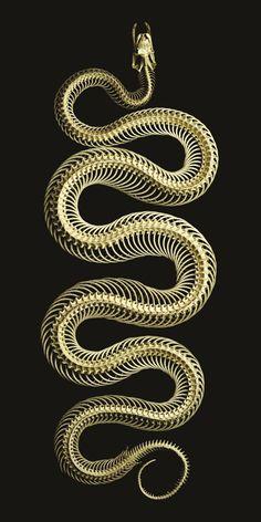 Serpentine - Mark Laita