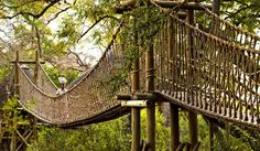 Experience a luxury safari in South Africa at Ulusaba, Sir Richard Branson's Private Safari Game Reserve. Enjoy twice daily game drives and unforgettable views. Safari Game, Private Safari, Safari Wedding, Private Games, Game Reserve, Wishing Well, Covered Bridges, Africa Travel, Best Vacations