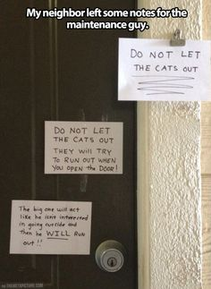 Cat lady leaves some notes..and what's wrong with  that?