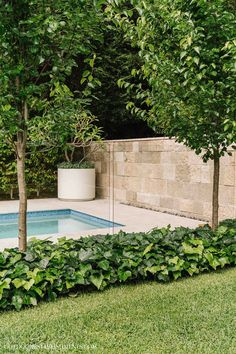 Outdoor Establishments is a Sydney based Landscape Architecture & Residential Garden Design firm also offering clients Landscape Construction, Professional Horticulture and Garden Maintenance. A complete Landscape service from concept to completion. Pool Landscape Design, House Landscape, Landscape Architecture, Architecture Design, Garden Design, Backyard Pool Designs, Small Backyard Pools, Backyard Ideas, Back Gardens