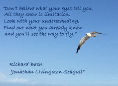 """Don't believe what your eyes tell you. All they show is limitation. Look with your understanding. Find out what you already know and you'll see the way to fly."" -Richard Bach, ""Jonathan Livingston Seagull"""