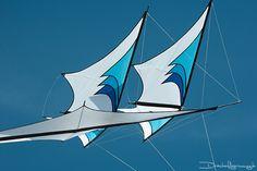 Drachenfliegerinnung Kites Craft, Origami, Kite Surf, Kite Making, Kite Designs, Surface Design, Sailing Ships, Airplane, Color Schemes
