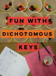 Fun with Dichotomous Keys-- jelly beans, monsters, and beads