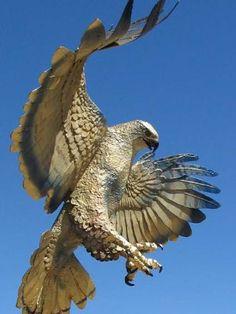 Google Image Result for http://www.ruralintelligence.com/images/kids/The_CENTER_birds_of_prey_440.jpg