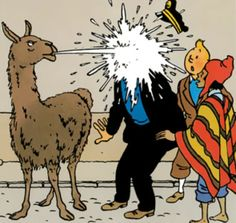 Tintin i Tibet Comic Book Characters, Comic Character, Comic Books, Illustrations, Illustration Art, Llama Images, Captain Haddock, Lucky Luke, Bd Comics
