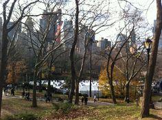 Winter in Central Park, NY