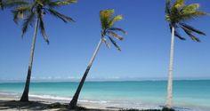 Compartilhando  Descobertas...: Praia Japaratinga-Alagoas  ( Brasil)