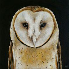 Barn Owl. Small Animalportret in acrylic. Buskermolen.exto.nl