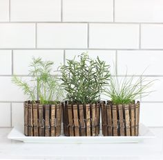 These stained-clothespin planters are a super-cute way to display your herb collection—although they're best-suited for plants that work well in teensy containers, like rosemary or chives. Find the (Spanish) instructions at Stebbing House Design—Google translation here. RELATED: 46 Ways to Make Something New Out of Something Old   - CountryLiving.com