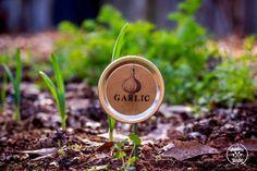 DIY: Mason Jar Lid Plant Label for the Garden.