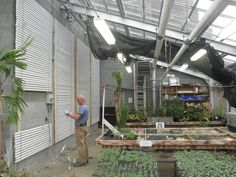 Using PCMs in a greenhouse. Better than a wall of simple water barrels and takes up less space.