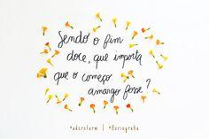 Floriografia: Marianinha no @adorofarm