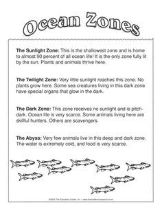 Ocean Zones - The Mailbox . Ocean Zones - The Mailbox Ocean Lesson Plans, Science Lesson Plans, Kindergarten Lesson Plans, Kindergarten Science, Science Resources, Preschool Lessons, Science Lessons, Science Education, Early Education