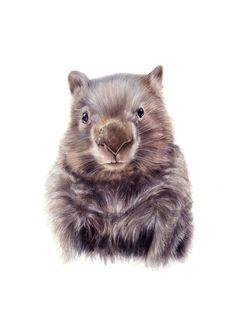 original art - wombat art - wombat illustration - wombat  - nursery art wall decor
