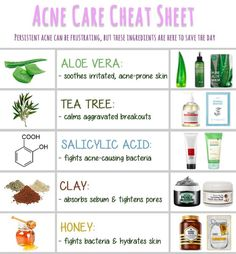 5 Power Ingredients For Acne-Prone Skin – Memebox: Nothing Boring. HAVE FUN.