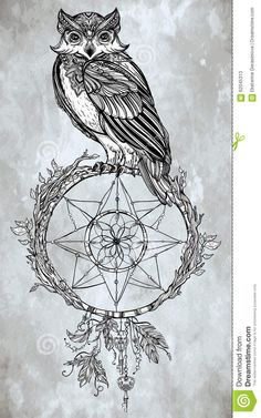 Owl With Dream Catcher, Feathers, Keys. Stock Vector - Image: 62045313