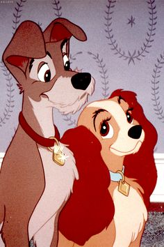 Lady and The Tramp - Together since 1955!  This was just too cute.  I had to put it here.