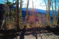 Near Hagerman Pass, Colorado