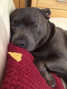 I'm too tired to eat that crisp Mum!