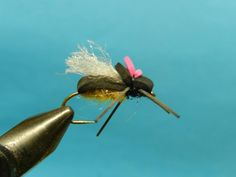 Trout flies by Peter Carty
