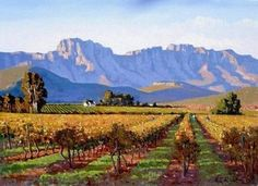 """Zandberg, Robertson"" Wineries, South Africa, Vineyard, Cape, Southern, Roses, Mountains, Heart, Travel"