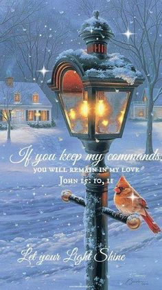 JOHN  15:10  -  If you keep my commandments , you shall abide in my love; even as I have kept my Father's commandments,  and abide in His Love.