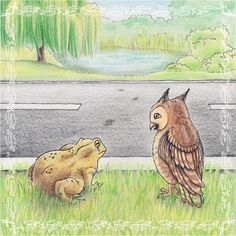 Eine #Illustration für #Kinder von Christina Busse www.christinabuss... für die #Kurzgeschichte 'Die Krötenwanderung' von Silke Winter.