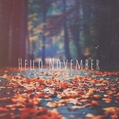 november, autumn, and fall image Seasons Months, Days And Months, Seasons Of The Year, Months In A Year, November Images, November Quotes, November Pictures, Welcome November, Hello November
