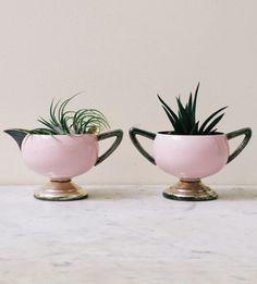 Cute planter idea.