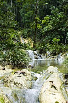 Reserva  protectora de manantiales Cerro San Gil, Izabal, Guatemala