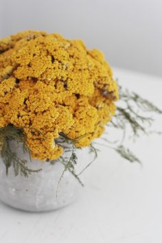Yarrow Mound, Dried Flower Arrangement: Gardenista