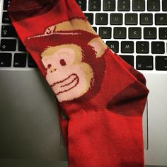 Got me some @mailchimp socks for free. It'll go nicely with my tshirt stickers and plush. #socks